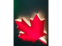 3D printed Maple Leaf1